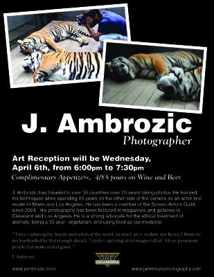 J. Ambrozic, Photography, Art Reception