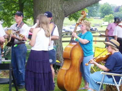 Music in the Valley; Folk & Wine Festival