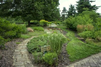Gardening through the Year