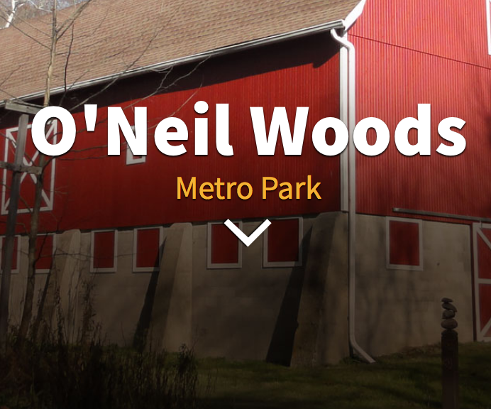 & Ou0027Neil Woods Metro Park | The #CreativeSummit Community!