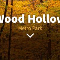 Wood Hollow Metro Park