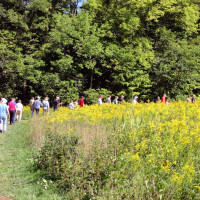 Healthy Strides Hike