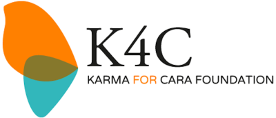 K4C microgrant (January 1)