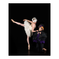 Verb Ballets presents Carnival of the Animals