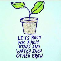 Rooted Akron