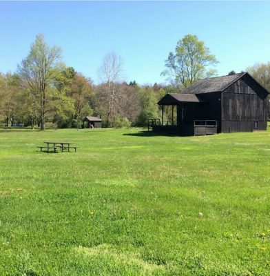 Howe Meadow