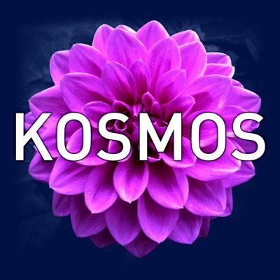 2017 Kosmos Seed Grant