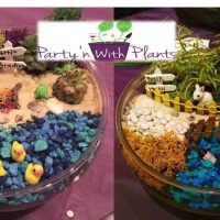 Fairlawn Fairy Garden workshop: Join Party'n With Plants
