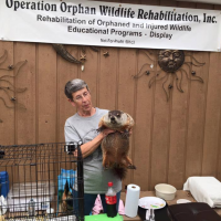 Operation Orphan Wildlife Rescue