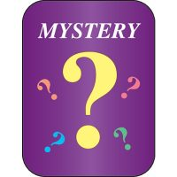 School Age Children's Programs (Mystery Program)