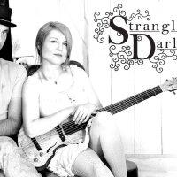 Strangled Darlings in Akron