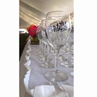 Summer Uncorked! Wine and Beer Tasting