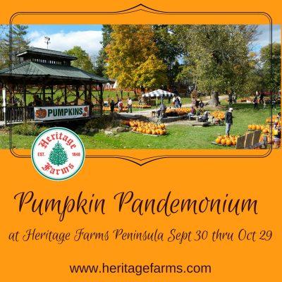 Pumpkin Pandemonium at Heritage Farms thru Sunday ...