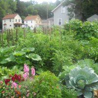 Community Garden Leader Training