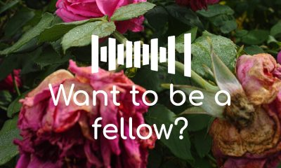 Fellowship Information Session