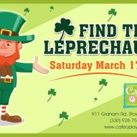 FIND THE LEPRECHAUN