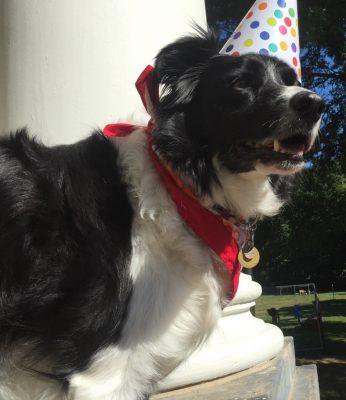 Rudy's Birthday Party