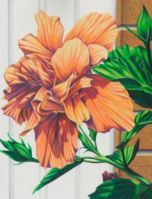 """Diane Belfiglio - November's """"Featured Local Artis..."""