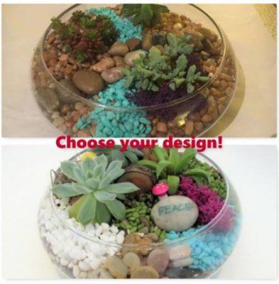 Choose your design terrarium
