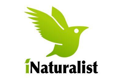 Nature Program for Homeschoolers (Free!)
