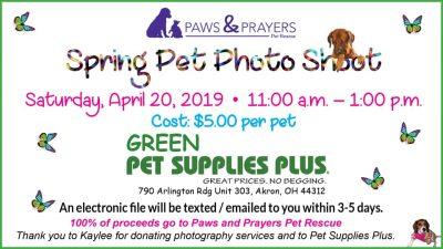 $5 Spring Pet Photo Shoot