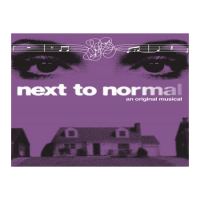 Next to Normal an Original Musical