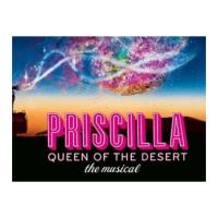 Priscilla : Queen of the Desert The Musical