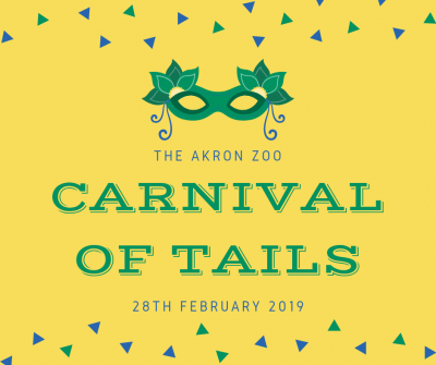 Carnival of Tails