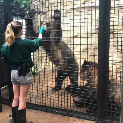 Animal Enrichment Day: Training Showcase