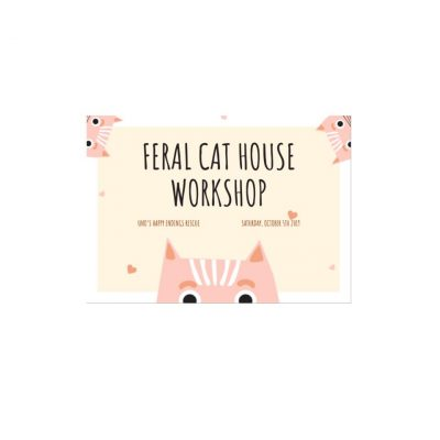 Feral Cat House Workshop