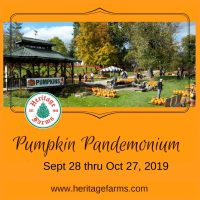 Pumpkin Pandemonium at Heritage Farms Peninsula - Open five days a week from Sept. 28 to Oct. 27, 20