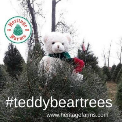 National Great Pyrenees Rescue Teddy Bear Trees fu...