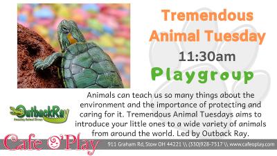 Tremendous Animal Tuesday Playgroup