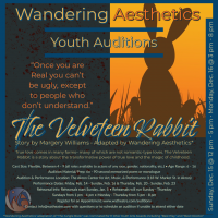YOUTH AUDITIONS: The Velveteen Rabbit