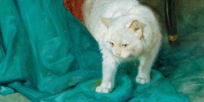 Les Délices: The White Cat