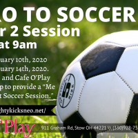 INTRO TO SOCCER - WINTER 2 SESSION.