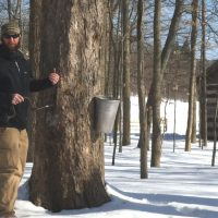 Maple Sugar Festival (CANCELED)