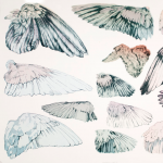 Sarah Ellis: thInkedition's Artist Talk