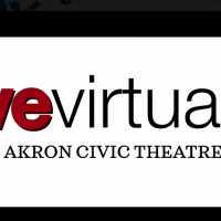Live Virtually - Seeking Talent