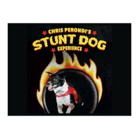 Chris Perondi's Stunt Dog Experience NEW DATE!