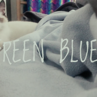 """RELEASE Music Video """"Green Blues"""" in celebration of Valentine's Day"""