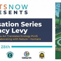 Stacy Levy presents a Two-Part Conversation Series with ArtsNow