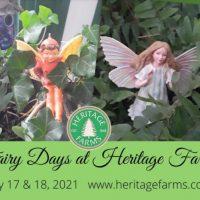 Fairy Days