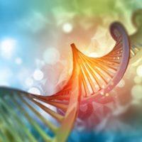 DNA Genealogy Group Meeting