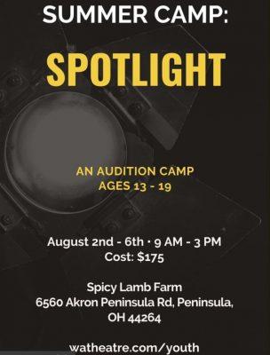 Wandering Aesthetics - Summer CAMP: Spotlight