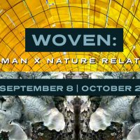 Woven: The Human x Nature Relationship